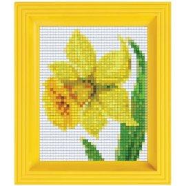 Pixelpakket - Gele Narcis