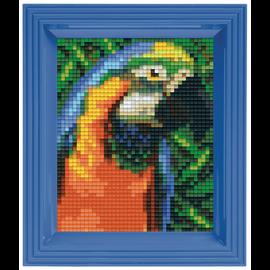Pixelpakket - papegaai