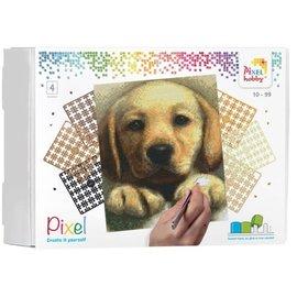 PixelHobby Pixel kit Golden Retriever puppy | 4 basisplaten