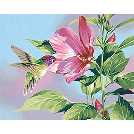 Painting by numbers - HIBISCUS HUMMINGBIRD - 28x36 cm