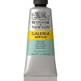 Winsor&Newton Winsor&Newton, Galeria Acrylic, Pale Olive, 60ml