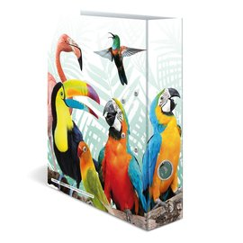"Kaft ""Tropische vogels"" A4"