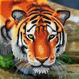Diamond Painting - Crystal Card Kit, The Tiger (partial) 18 x 18 cm