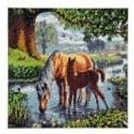Diamond Painting - Crystal Art Kit 30x30 cm Fell Ponies
