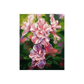 Painting by numbers - Azalea 40x50cm