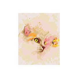 painting by number Kitten and Butterfly 40x50cm