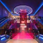 Neon lichtslang – Blauw - LINA