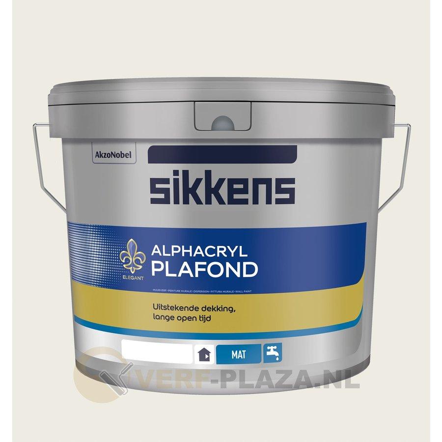 RAL 9010 - Sikkens Alphacryl Plafondverf-1