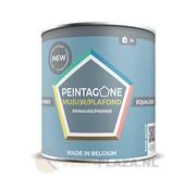 Peintagone Peintagone Primer Equalizer