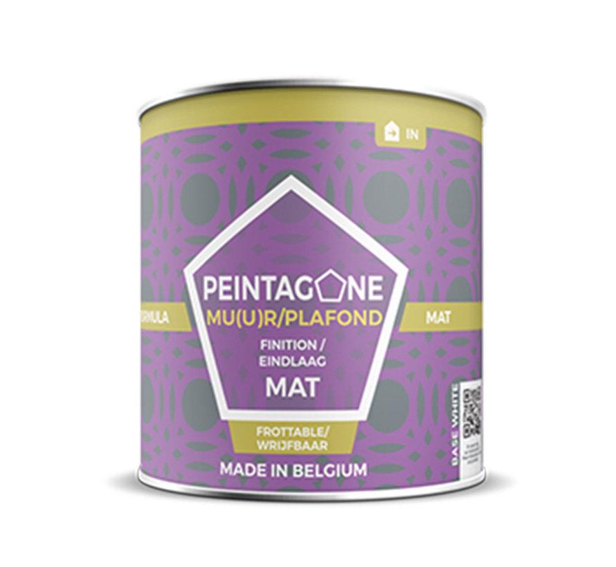 Peintagone Formula Mat   ACTIEPRIJS -40% KORTING! MET KORTINGSCODE: PEIN40
