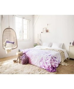 Purple Fields of France Purple