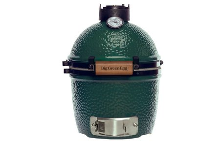 Big Green Egg Big Green Egg Mini standaard