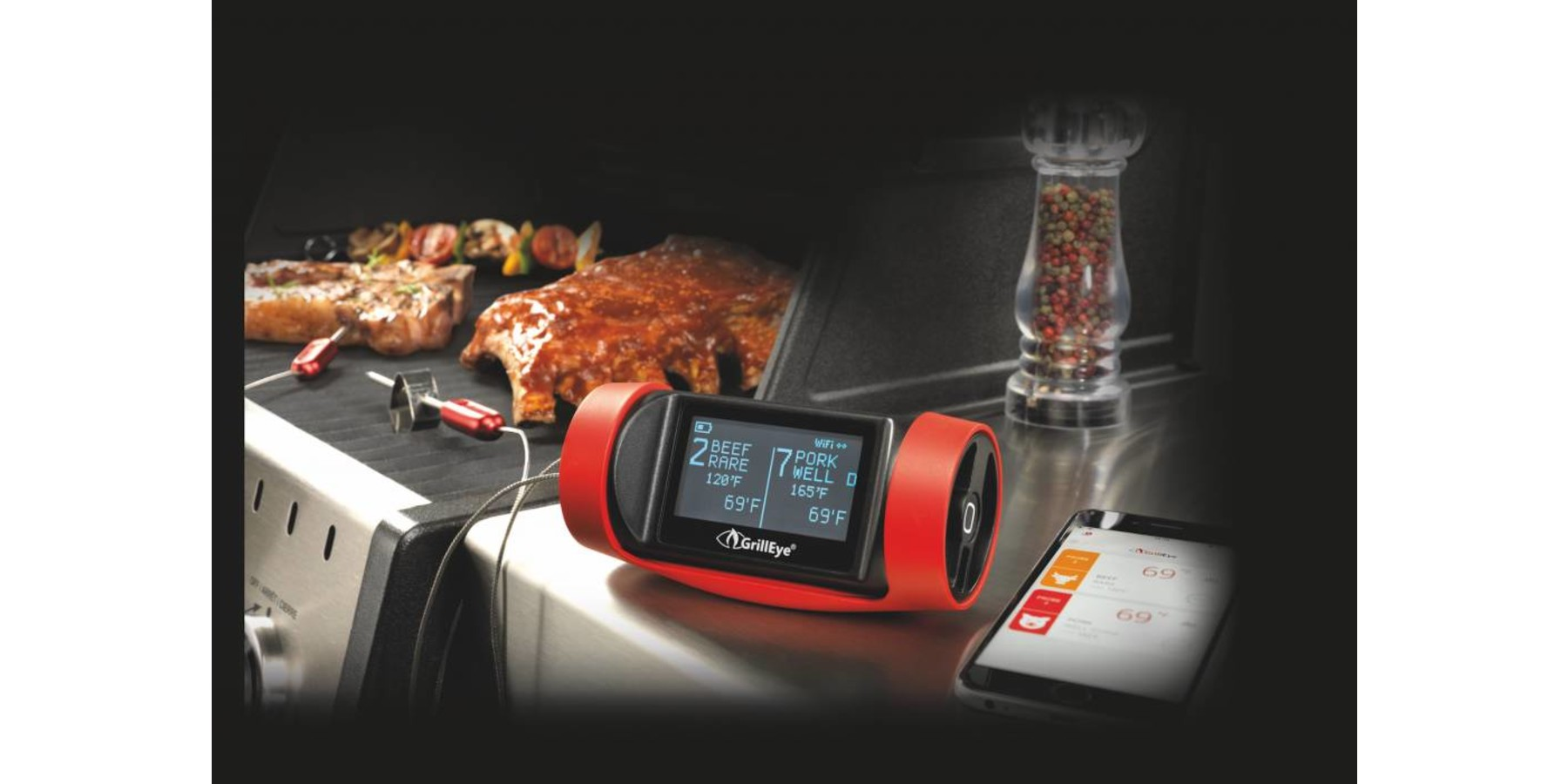 Pro +  bluetooth/wifi vlees -en bbq thermometer