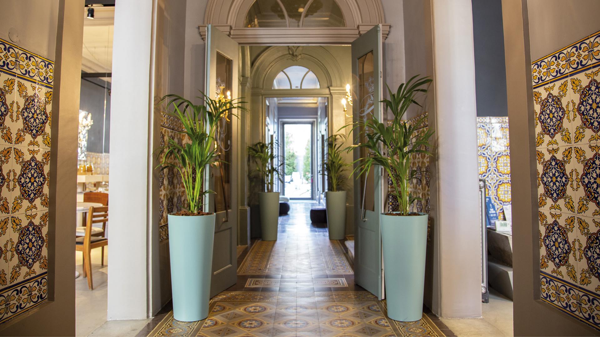 Tips voor het stylen van je ruimte met planten en potten