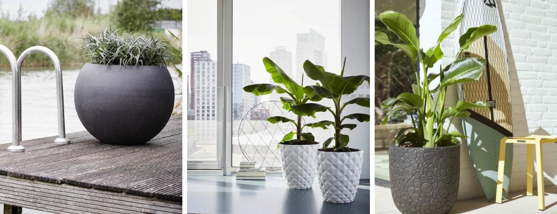 Plantenbak vullen met vaste planten