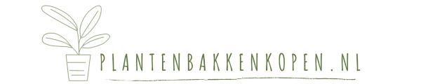 Plantenbakkenkopen.nl | Voor Plantenbakken, Bloempotten en Vazen
