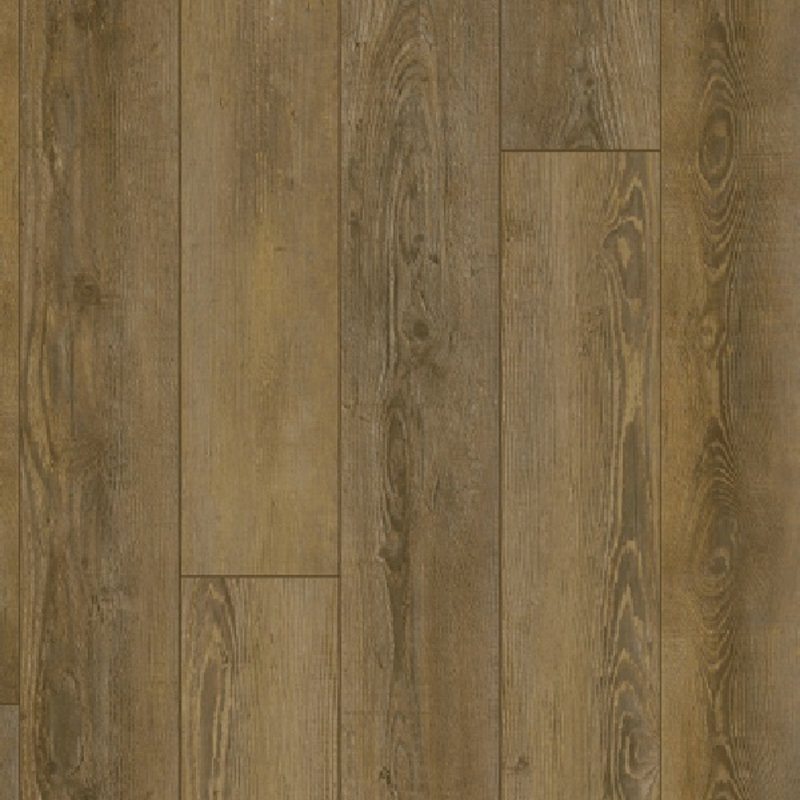 City Olympia Pine Natural 5604