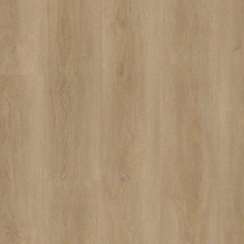 Therdex Rigid Click Series C15052