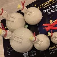 """Lichtkunstfestival van"""" De Kleine Prins"""" - Bezoek de """"BAOBAB"""" (apenbroodboom) bij Artisann"""