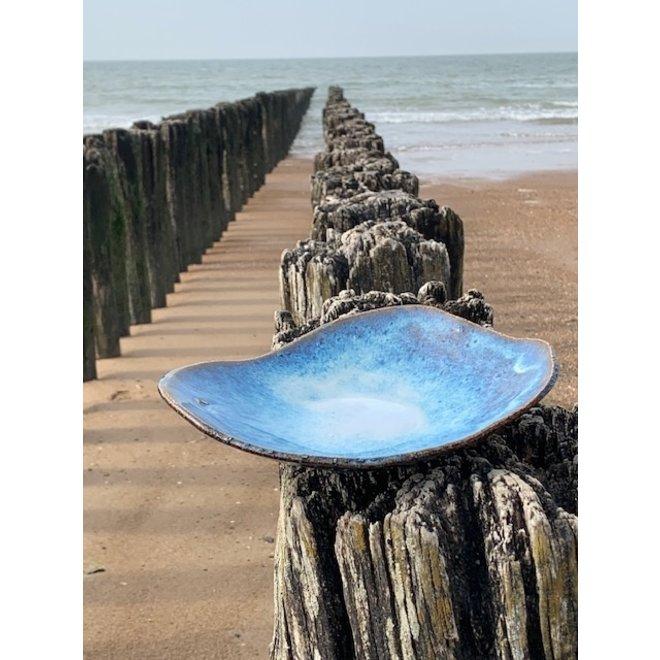Coquillage Schaal en Bord Beach