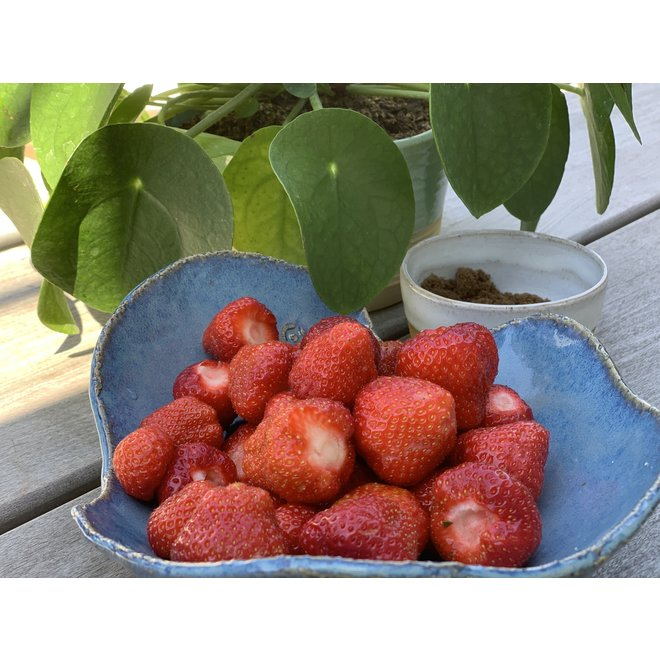 Un plat creuse contemporain fait à la main en forme de coquille. Très décoratif pour exposer fruits, légumes, salades.