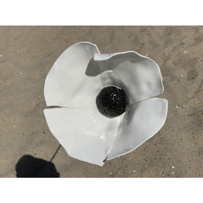 De handgemaakte klaproos in wit geglazuurd met een zwart hart en met veel passie en liefde gemaakt. Een blikvanger in de tuin of plantenbak.