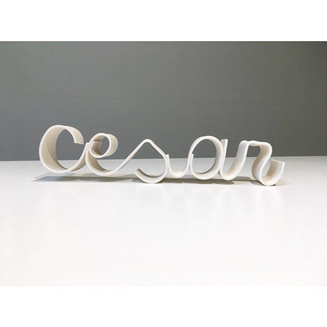 """Handmade porcelain name """"Cesar"""". Unique porcelain decoration."""