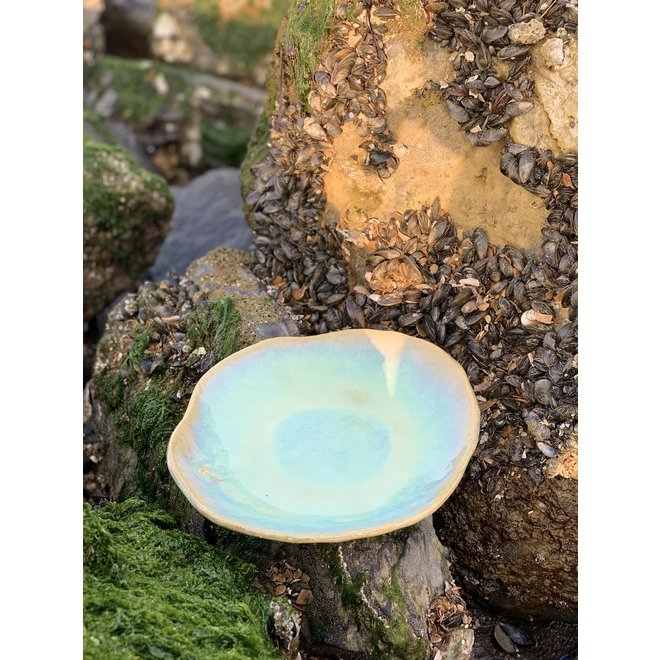 """Handmade ceramic plate Amandine in shell shape and lagune glazes of the """"Chefs Artisann i-lign"""" for contemporary use as well as for catering."""