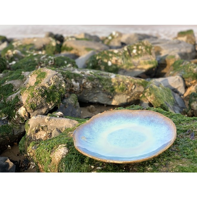 "Handmade ceramic plate Amandine sunset in shell shape ""Chefs Artisann i-lign"" for contemporary use as well as for catering."