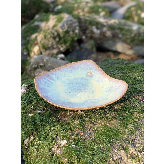 Dit uniek schelpvormig bord heeft een functioneel middelgroot presentatie bodem en zeer origineel in presentatie voor de chef en de kok in huis
