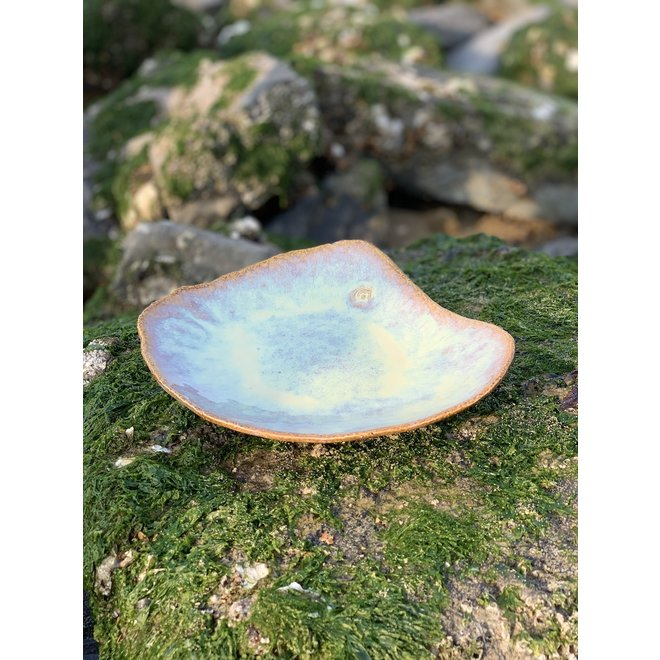 This unique shell-shaped plate has a functional medium-sized presentation bottom and very original in presentation for the chef