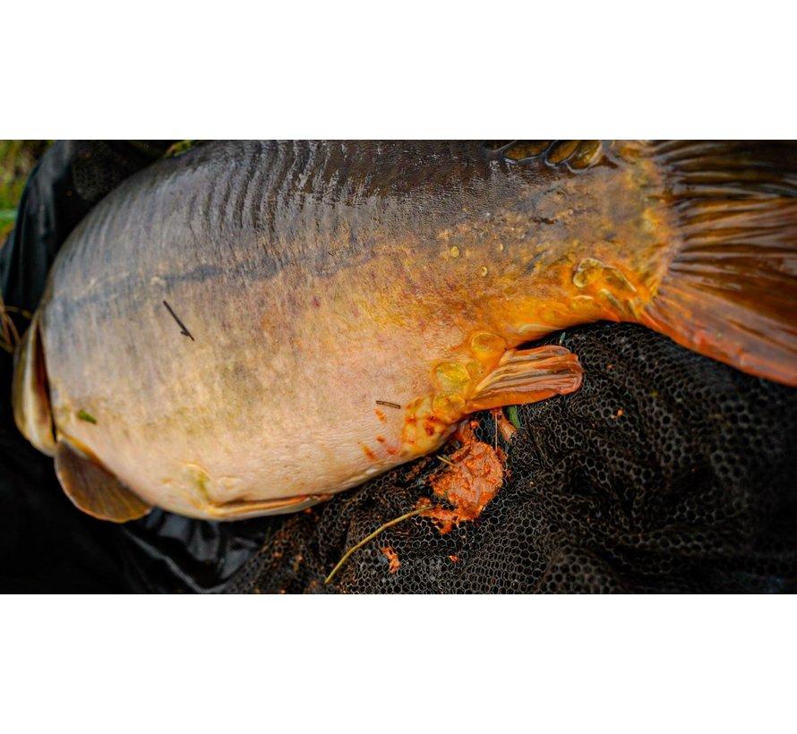 Najaarspakketten - Fish 'N Tutti