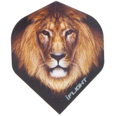 Piórka iPiórek - Lion