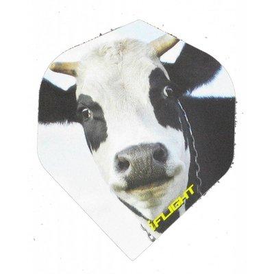Piórka iPiórek Cow