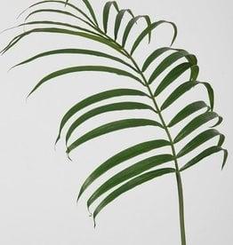 kunstbloem Palmblad
