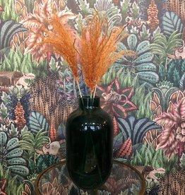 Blooming Droogbloem Pampas Pluim klein - oranje