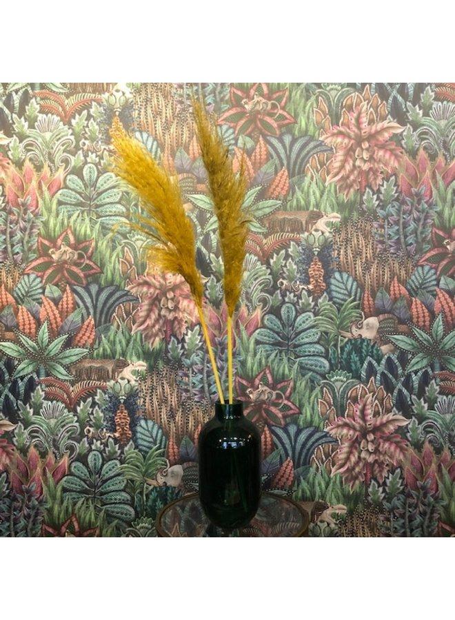Droogbloem Pampas Pluim - geel