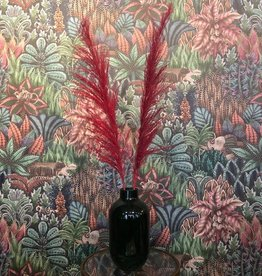 Droogbloem Pampas Pluim - roze/rood