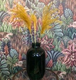 Droogbloem Pampas Pluim klein - geel