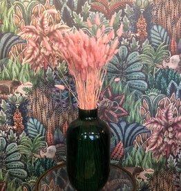 Droogbloem Hazenstaart - roze