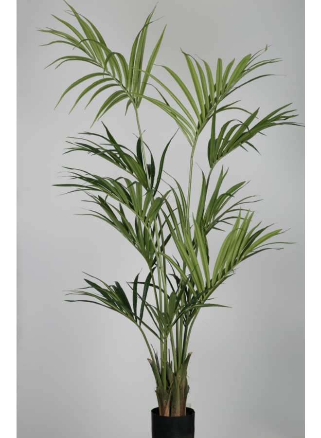Kunstplant Kentia Palm 180cm
