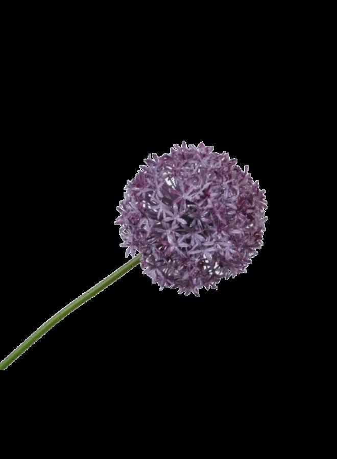 Kunstbloem Uienbol - paars