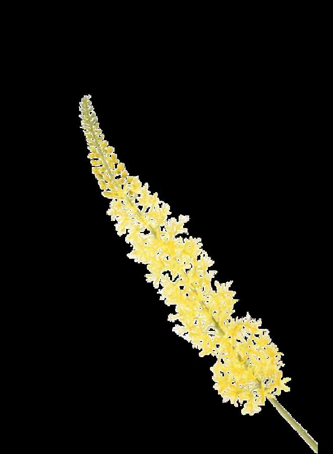 Kunstbloem Eremurus geel