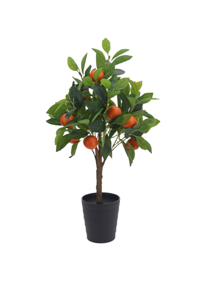 Kunst Sinaasappelboompje