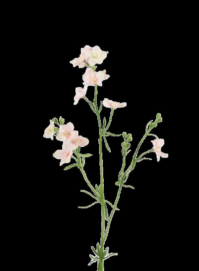 Larkspur - licht roze
