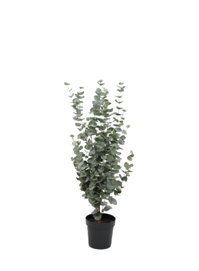 Kunstplant Eucalyptus Bush 119cm