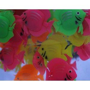 Fish in 35mm capsule