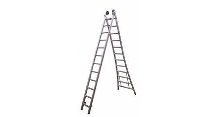 2 delige ladders