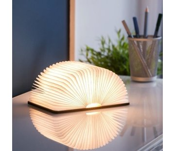 Gingko Smart book light