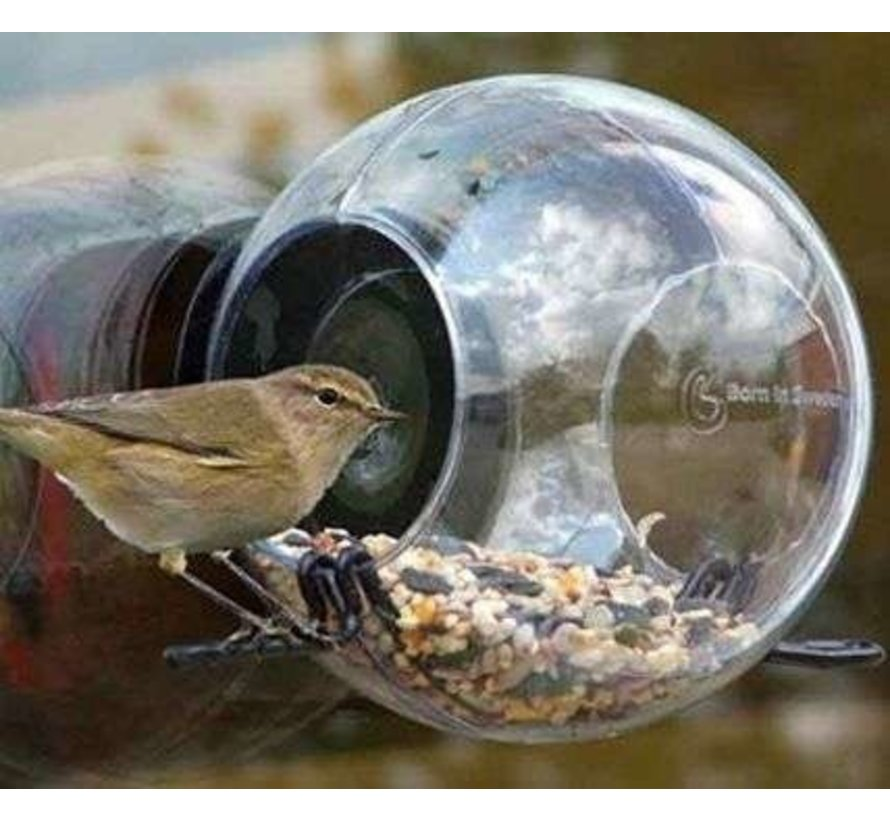 Bird feeder Born in Sweden